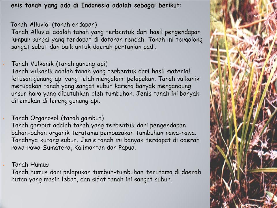 enis tanah yang ada di Indonesia adalah sebagai berikut: Tanah Alluvial (tanah endapan) Tanah Alluvial adalah tanah yang terbentuk dari hasil pengenda