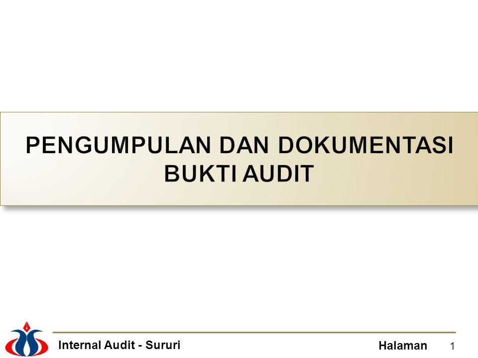 Internal Audit - Sururi Halaman 1