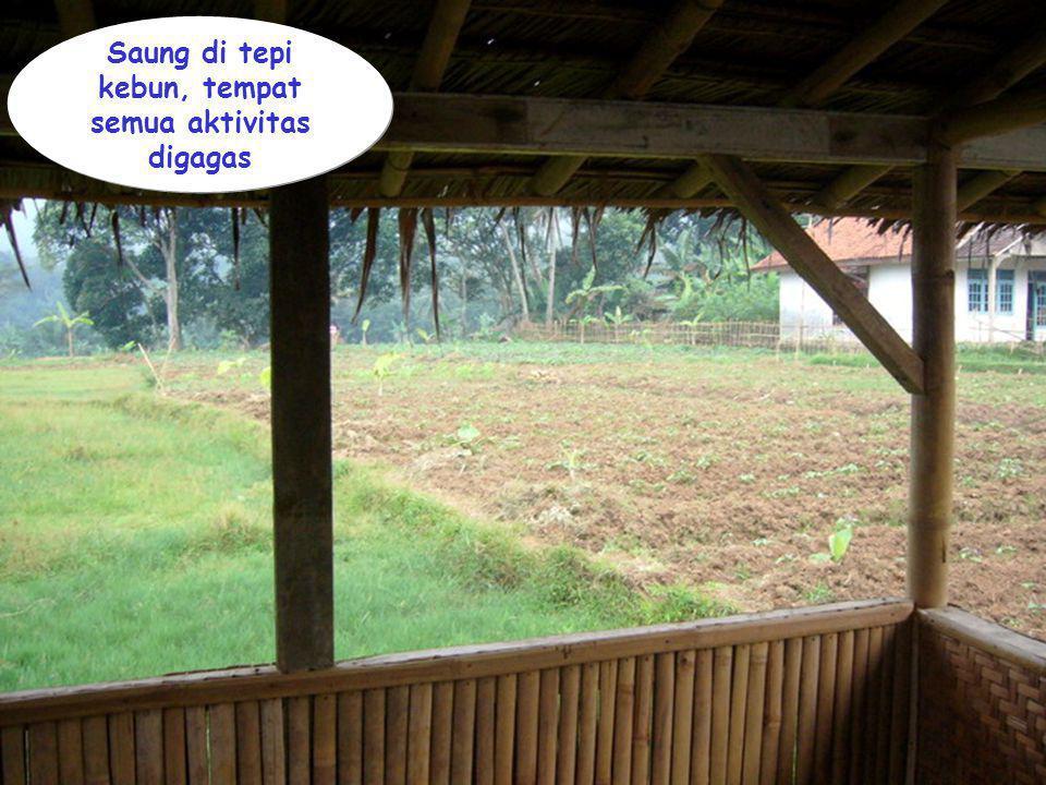 Kawi Boedisetio telebiro.bandung0@clubmember.org Saung di tepi kebun, tempat semua aktivitas digagas