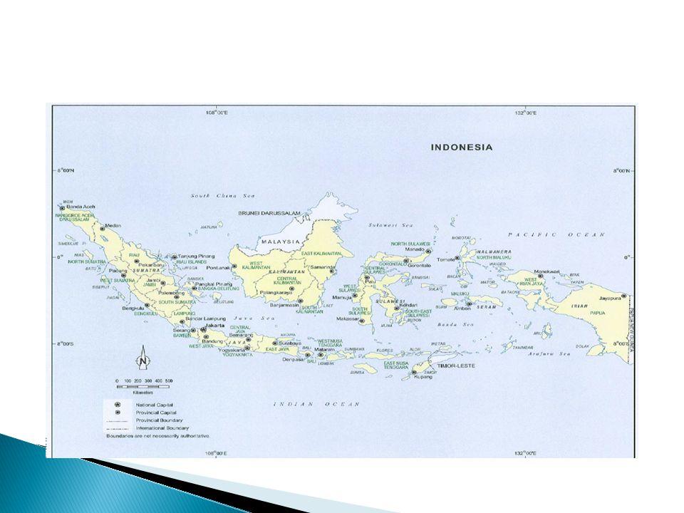  Smelser berpendapat bahwa proses perkembangan masyarakat adalah merupakan proses transformasi sosial yang mengikuti perkembangan ekonomi  Pembangunan ekonomi di Indonesia harus bersinergi dengan pembangunan sosial di Indonesia