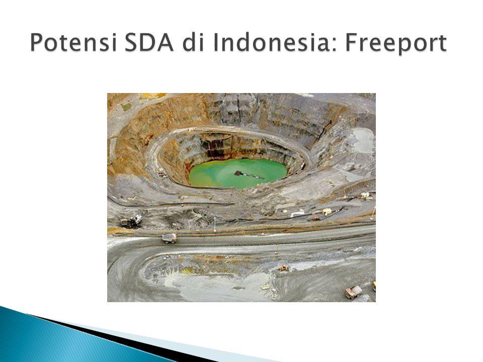  survei Nielsen secara online mencatat, ada sekitar 29 juta warga kelas menengah premium di Indonesia.