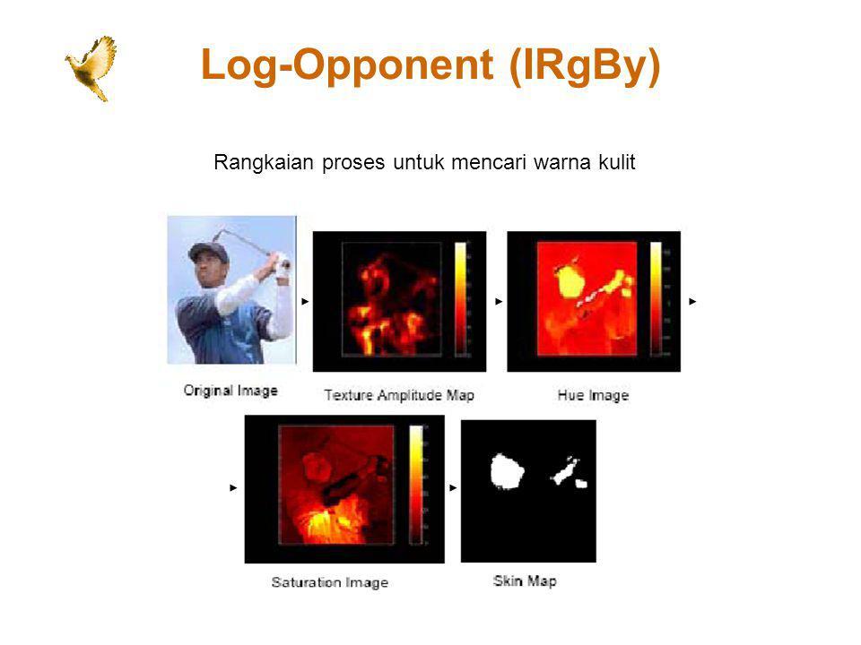 Log-Opponent (IRgBy) Rangkaian proses untuk mencari warna kulit
