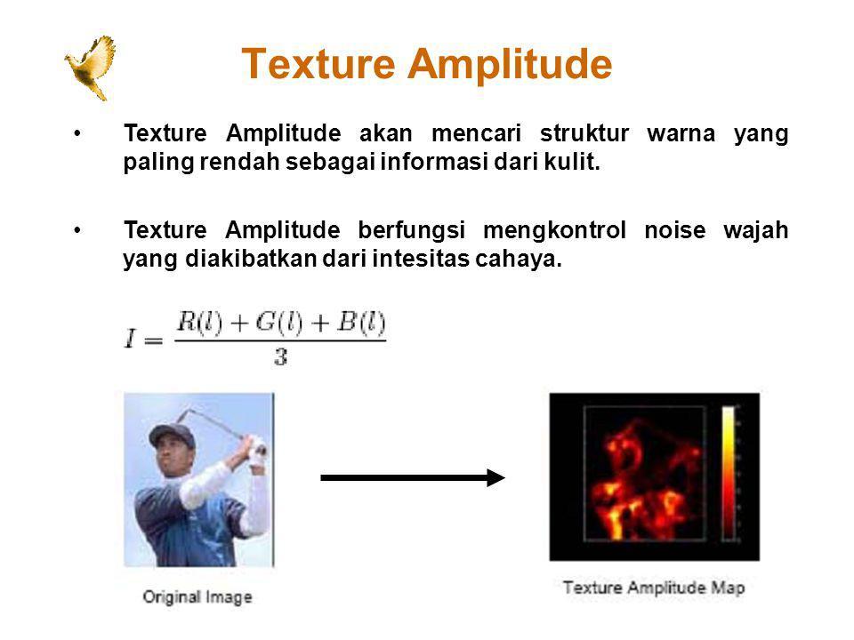 Texture Amplitude Texture Amplitude akan mencari struktur warna yang paling rendah sebagai informasi dari kulit. Texture Amplitude berfungsi mengkontr
