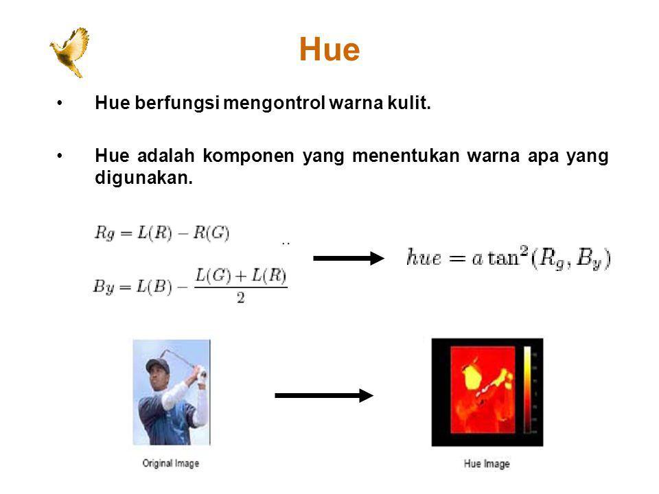 Hue Hue berfungsi mengontrol warna kulit. Hue adalah komponen yang menentukan warna apa yang digunakan.