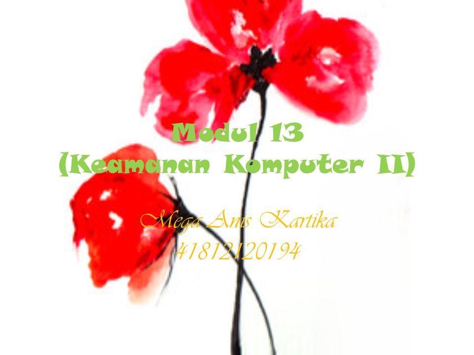 Modul 13 (Keamanan Komputer II) Mega Anis Kartika 41812120194