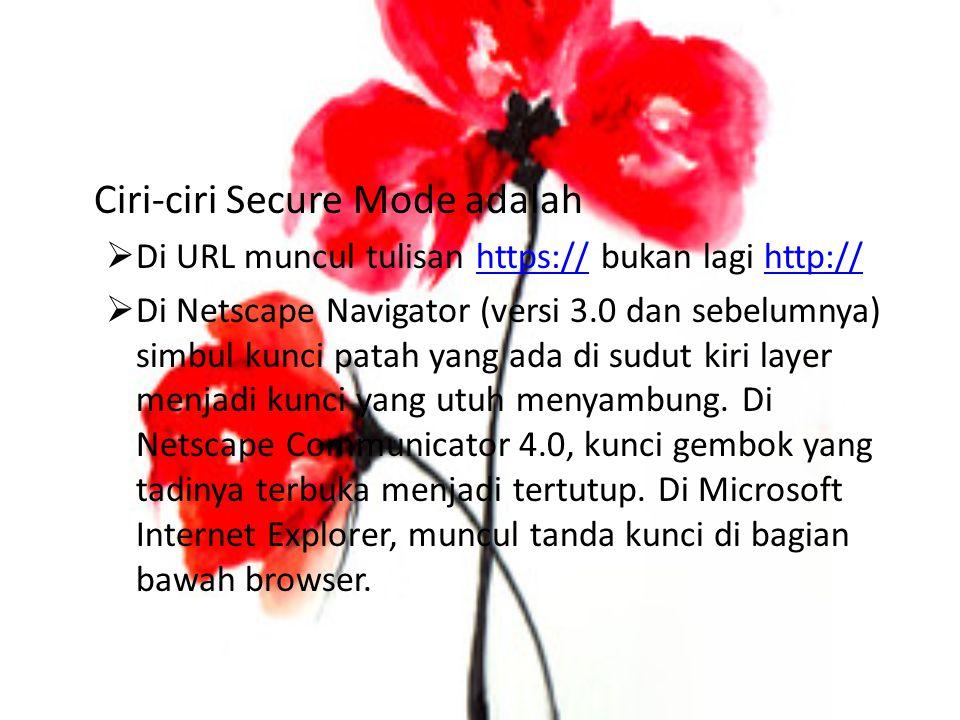 Ciri-ciri Secure Mode adalah  Di URL muncul tulisan https:// bukan lagi http://https://http://  Di Netscape Navigator (versi 3.0 dan sebelumnya) simbul kunci patah yang ada di sudut kiri layer menjadi kunci yang utuh menyambung.