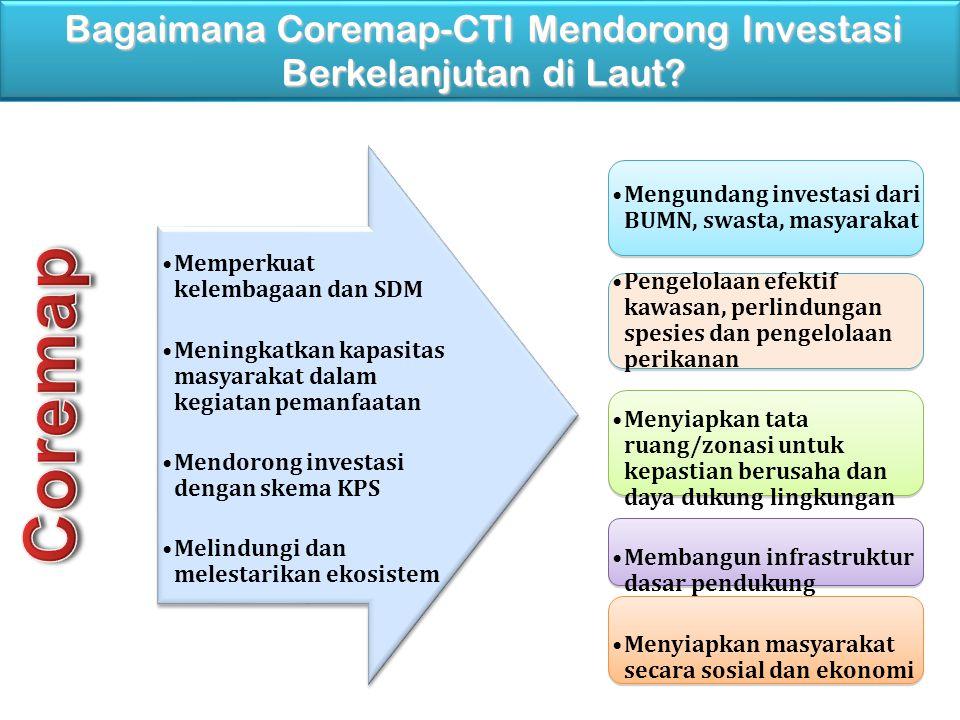 Memperkuat kelembagaan dan SDM Meningkatkan kapasitas masyarakat dalam kegiatan pemanfaatan Mendorong investasi dengan skema KPS Melindungi dan melest