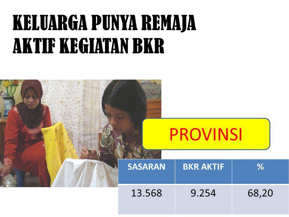KELUARGA PUNYA REMAJA AKTIF KEGIATAN BKR SASARANBKR AKTIF% 13.5689.25468,20 PROVINSI