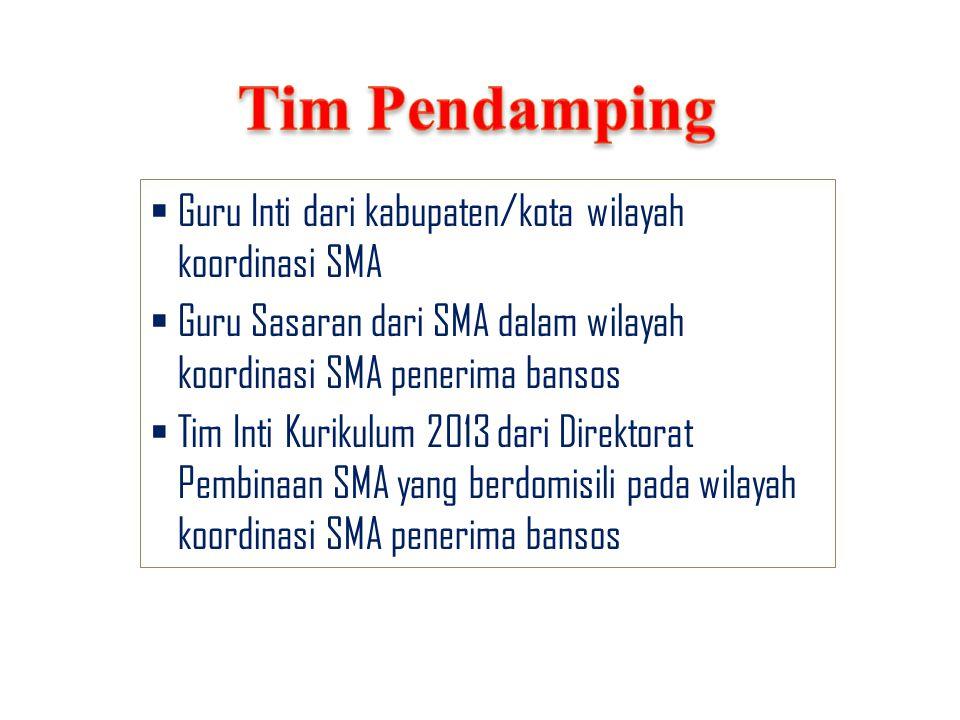  Guru Inti dari kabupaten/kota wilayah koordinasi SMA  Guru Sasaran dari SMA dalam wilayah koordinasi SMA penerima bansos  Tim Inti Kurikulum 2013