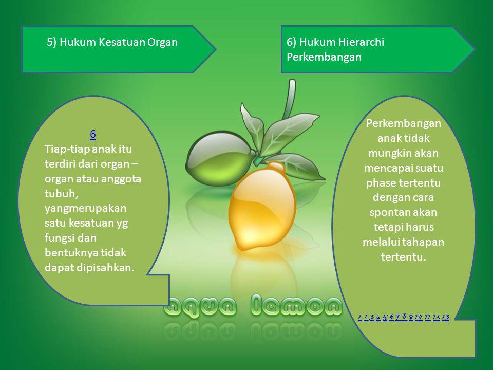 5) Hukum Kesatuan Organ6) Hukum Hierarchi Perkembangan 6 Tiap-tiap anak itu terdiri dari organ – organ atau anggota tubuh, yangmerupakan satu kesatuan