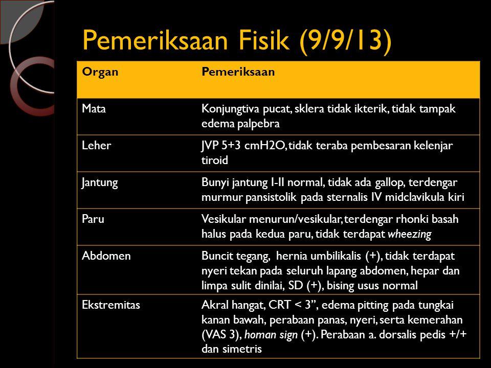 Pemeriksaan Fisik (9/9/13) OrganPemeriksaan MataKonjungtiva pucat, sklera tidak ikterik, tidak tampak edema palpebra LeherJVP 5+3 cmH2O, tidak teraba