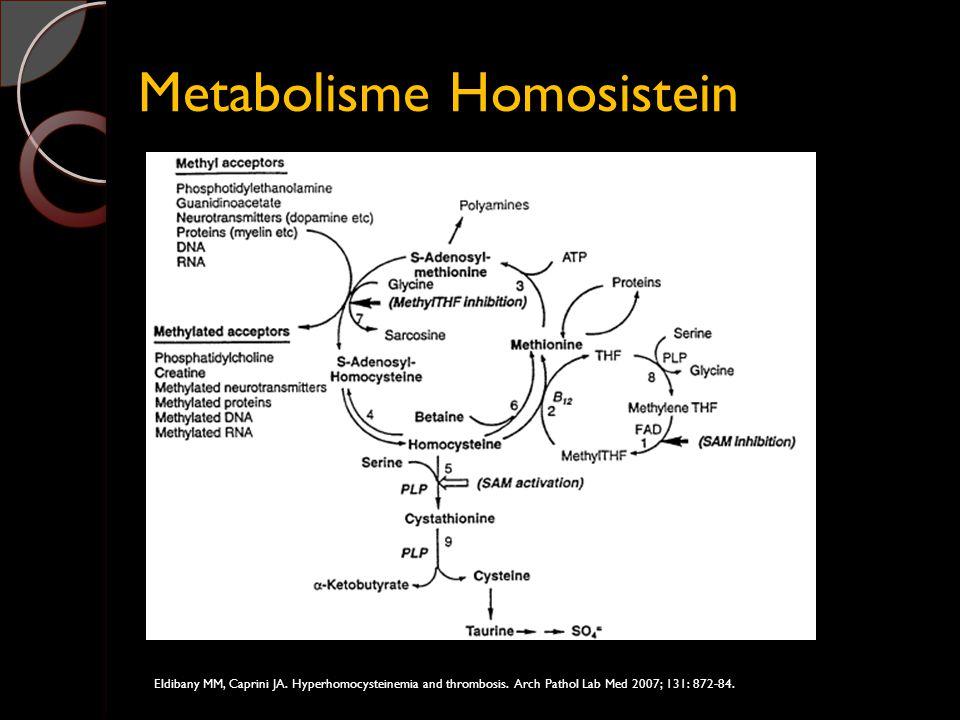 Metabolisme Homosistein Eldibany MM, Caprini JA. Hyperhomocysteinemia and thrombosis. Arch Pathol Lab Med 2007; 131: 872-84.