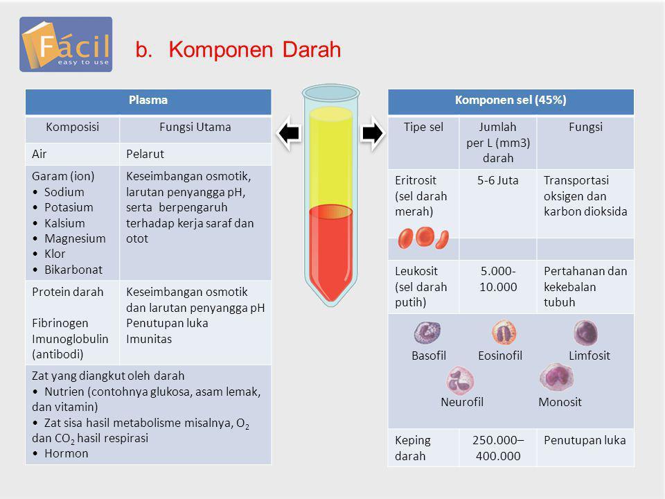 b.Komponen Darah Plasma KomposisiFungsi Utama AirPelarut Garam (ion) Sodium Potasium Kalsium Magnesium Klor Bikarbonat Keseimbangan osmotik, larutan p