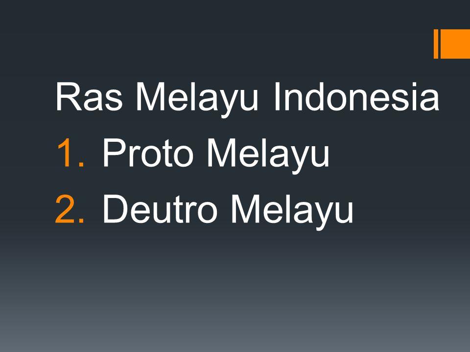 Ras Melayu Indonesia 1.Proto Melayu 2.Deutro Melayu