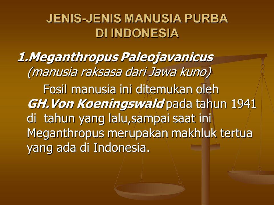 JENIS-JENIS MANUSIA PURBA DI INDONESIA 1.Meganthropus Paleojavanicus (manusia raksasa dari Jawa kuno) Fosil manusia ini ditemukan oleh GH.Von Koenings