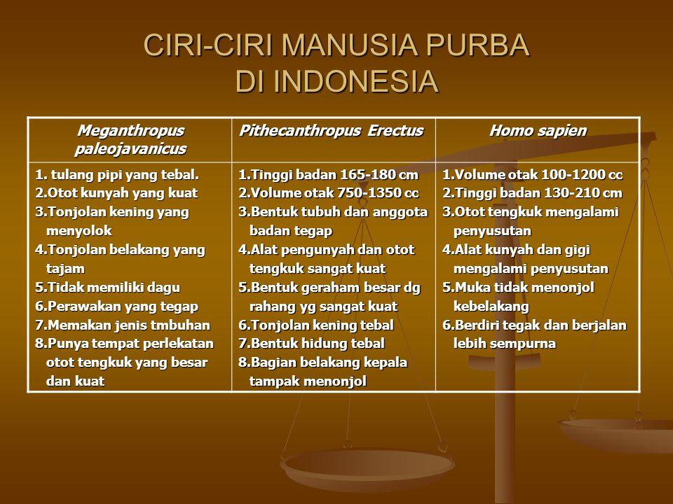 CIRI-CIRI MANUSIA PURBA DI INDONESIA Meganthropus paleojavanicus Pithecanthropus Erectus Homo sapien 1. tulang pipi yang tebal. 2.Otot kunyah yang kua