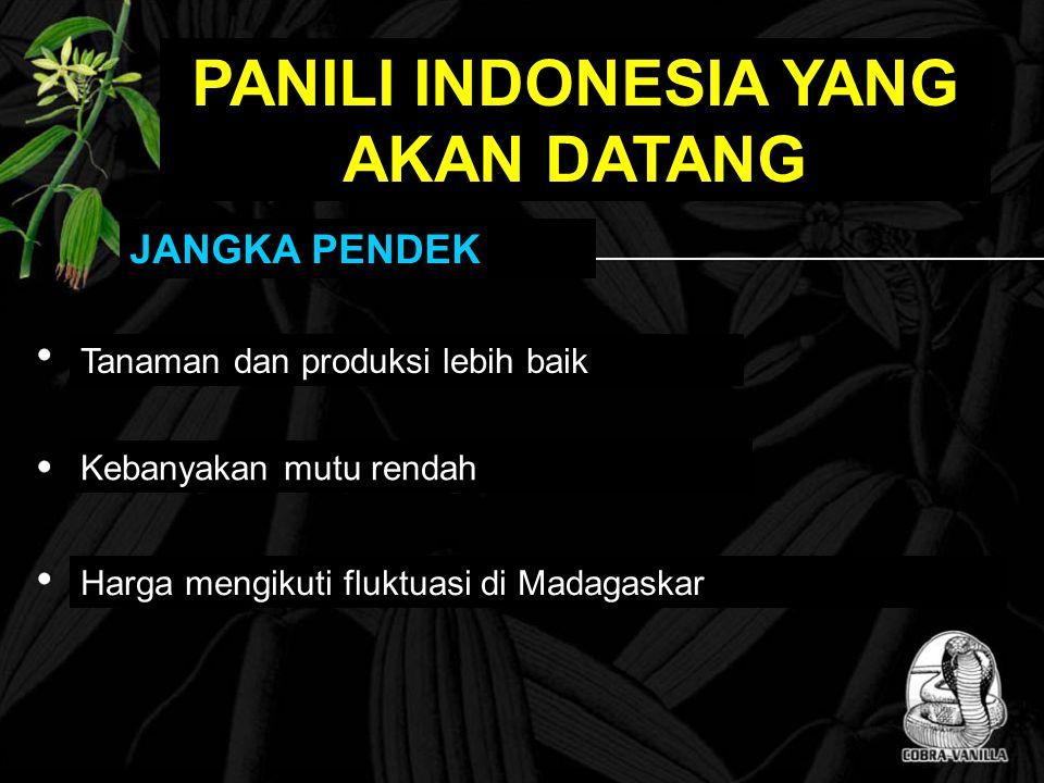 PANILI INDONESIA YANG AKAN DATANG JANGKA PENDEK Tanaman dan produksi lebih baik Kebanyakan mutu rendah Harga mengikuti fluktuasi di Madagaskar