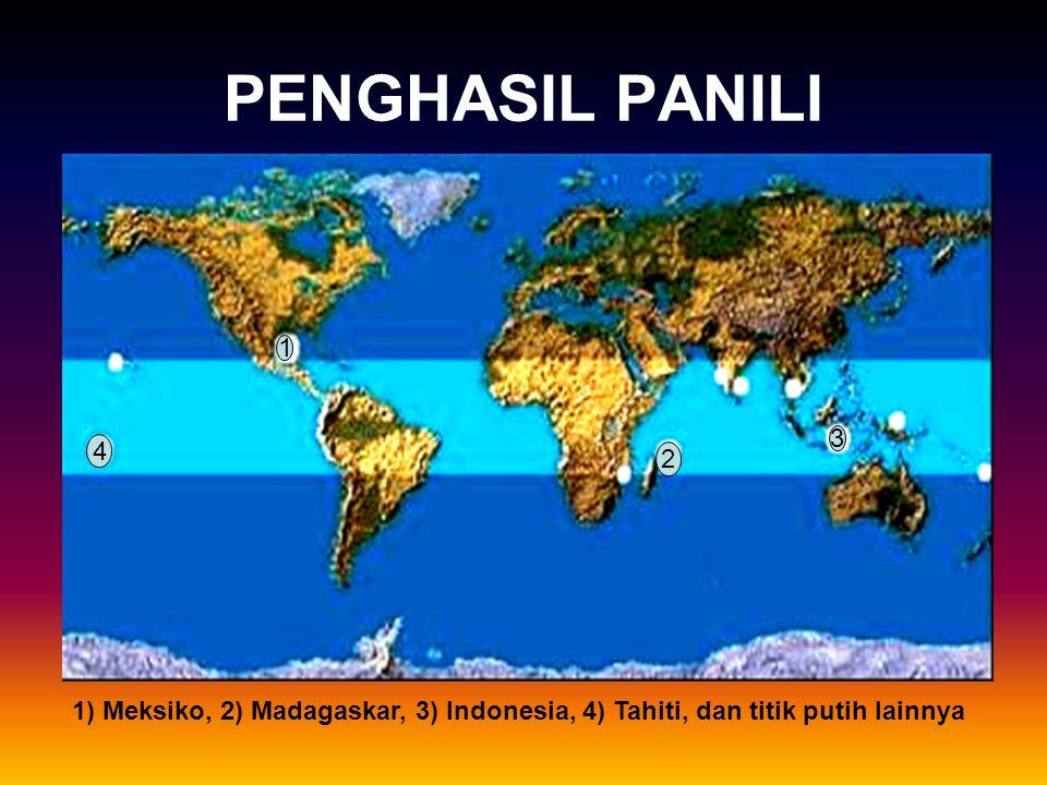 4 1 2 3 PENGHASIL PANILI 1) Meksiko, 2) Madagaskar, 3) Indonesia, 4) Tahiti, dan titik putih lainnya