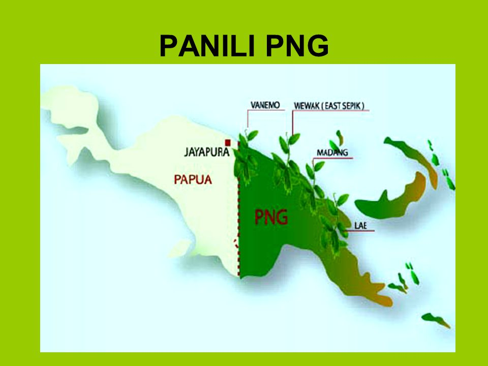PANILI PNG