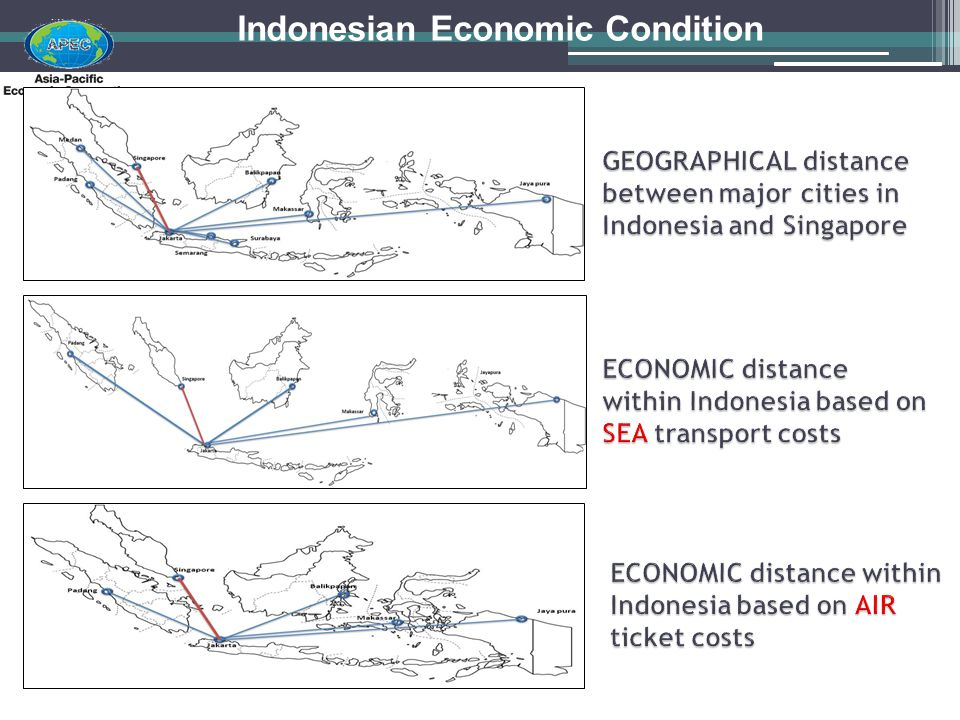 Indonesian Economic Condition