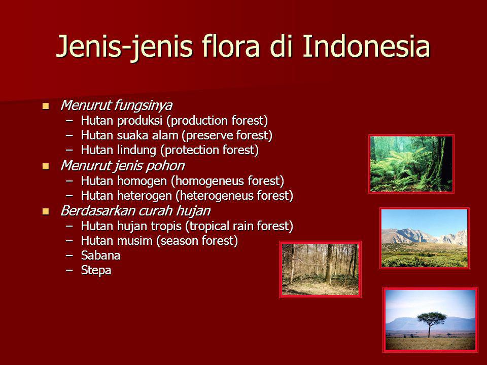 Jenis-jenis flora di Indonesia Menurut fungsinya Menurut fungsinya –Hutan produksi (production forest) –Hutan suaka alam (preserve forest) –Hutan lind