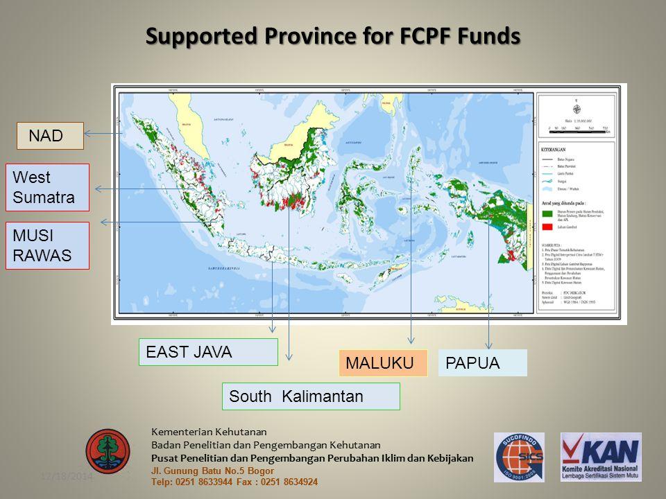 Kementerian Kehutanan Badan Penelitian dan Pengembangan Kehutanan Pusat Penelitian dan Pengembangan Perubahan Iklim dan Kebijakan Jl.