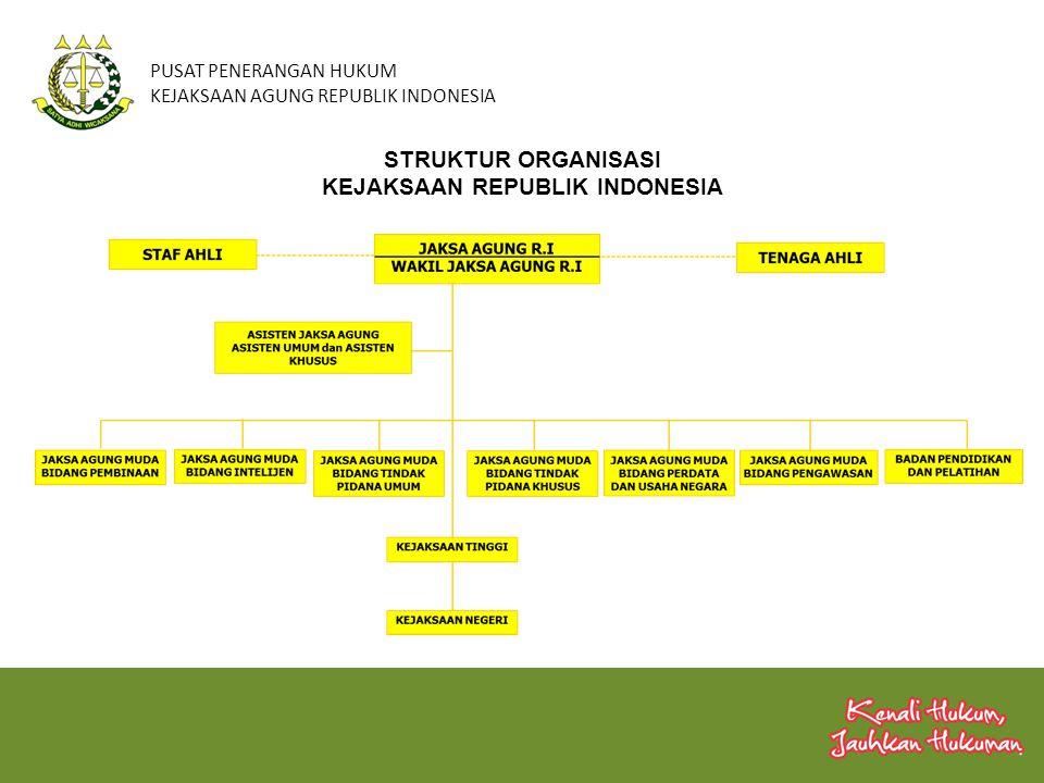 PUSAT PENERANGAN HUKUM KEJAKSAAN AGUNG REPUBLIK INDONESIA Kewenangan Kejaksaan Republik Indonesia di Bidang Perdata dan Tata Usaha Negara UU No.16 / 2004 Pasal 30 ayat (2) Di bidang Perdata dan TUN, Kejaksaan dengan kuasa khusus dapat bertindak baik di dalam maupun di luar pengadilan untuk dan atas nama negara atau pemerintah Pelaksanaannya sebagaimana dimaksud dalam Pasal 30 ayat (2) UU No.