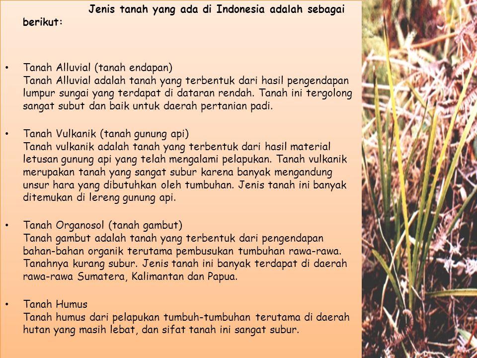 Jenis tanah yang ada di Indonesia adalah sebagai berikut: Tanah Alluvial (tanah endapan) Tanah Alluvial adalah tanah yang terbentuk dari hasil pengendapan lumpur sungai yang terdapat di dataran rendah.