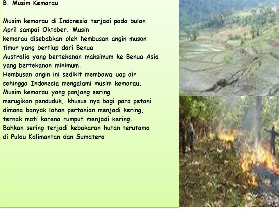 B.Musim Kemarau Musim kemarau di Indonesia terjadi pada bulan April sampai Oktober.