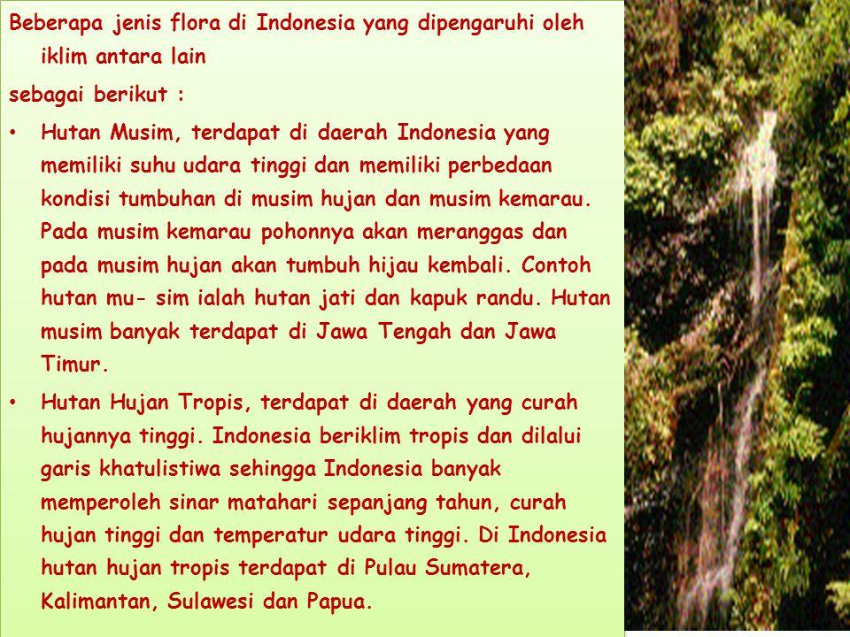 Beberapa jenis flora di Indonesia yang dipengaruhi oleh iklim antara lain sebagai berikut : Hutan Musim, terdapat di daerah Indonesia yang memiliki suhu udara tinggi dan memiliki perbedaan kondisi tumbuhan di musim hujan dan musim kemarau.