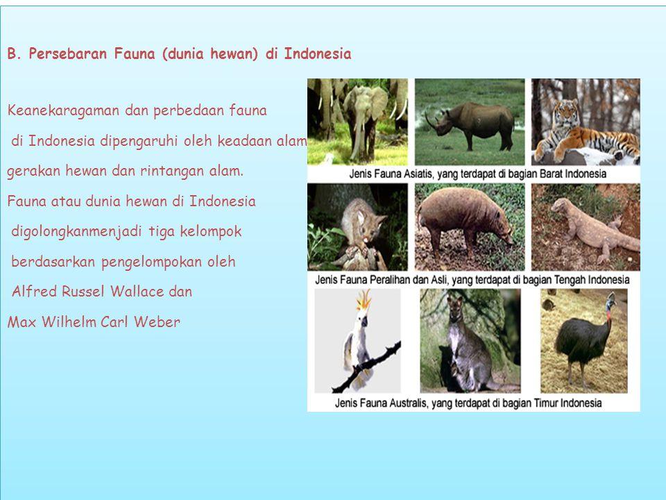 Secara ringkas tiga kelompok fauna di Indonesia adalah sebagai berikut : Fauna tipe Asiatis, menempati bagian barat Indonesia sampai Selat Makasar dan Selat Lombok.