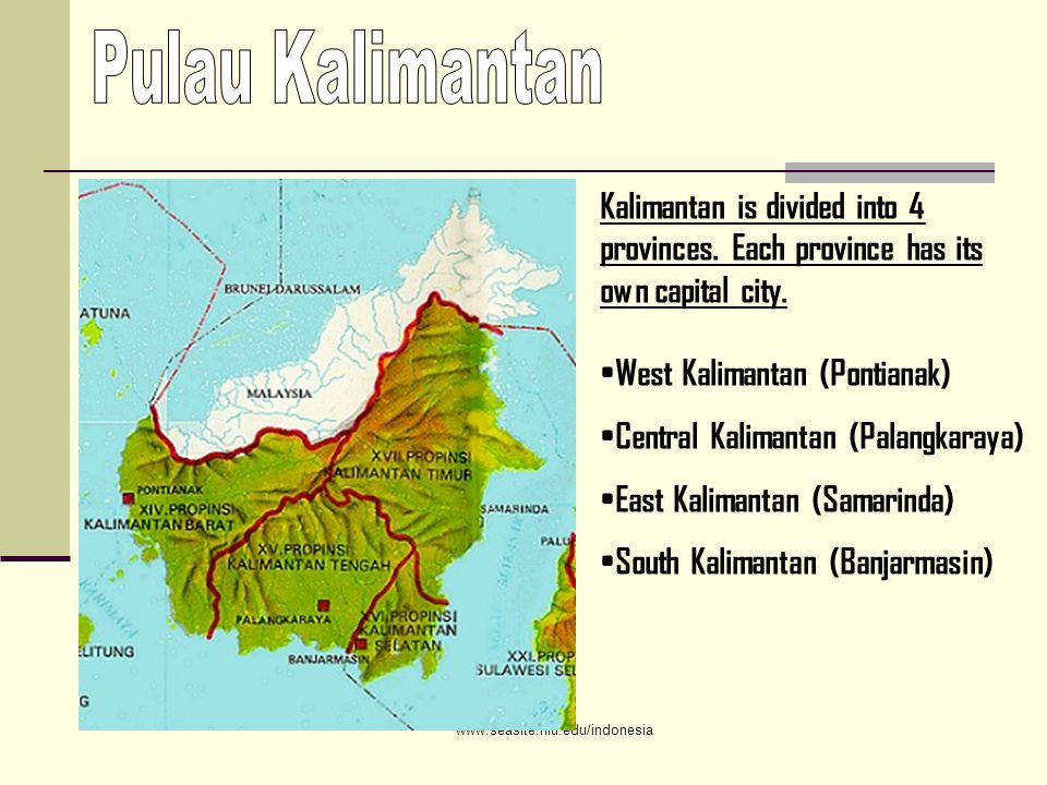 Kalimantan is divided into 4 provinces. Each province has its own capital city.