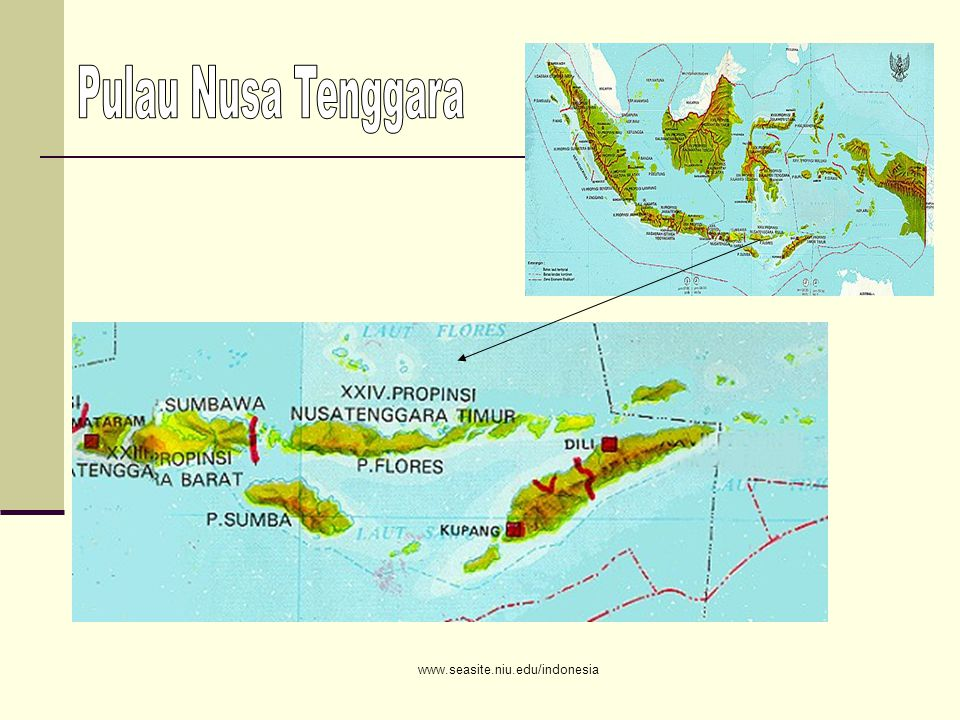 www.seasite.niu.edu/indonesia