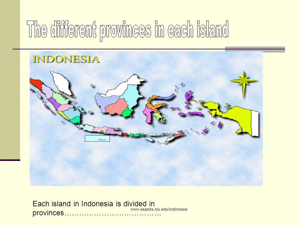 Sumatra is divided into 8 provinces Acheh North Sumatra West Sumatra South Sumatra Riau Bengkulu Jambi Lampung