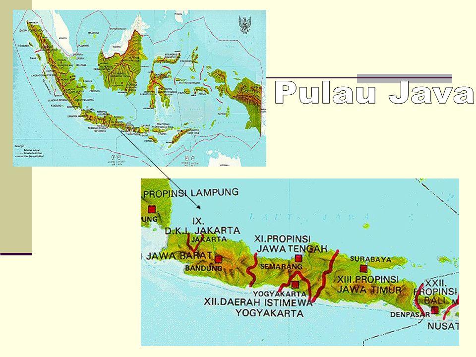 Pulau Java is divided into 5 provinces.