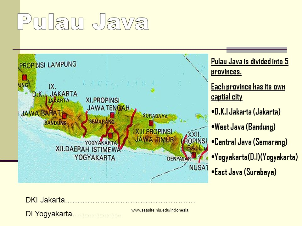 Pulau Java is divided into 5 provinces.