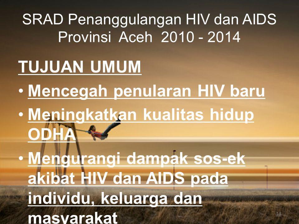 13 SRAD Penanggulangan HIV dan AIDS Provinsi Aceh 2010 - 2014 TUJUAN UMUM Mencegah penularan HIV baru Meningkatkan kualitas hidup ODHA Mengurangi damp