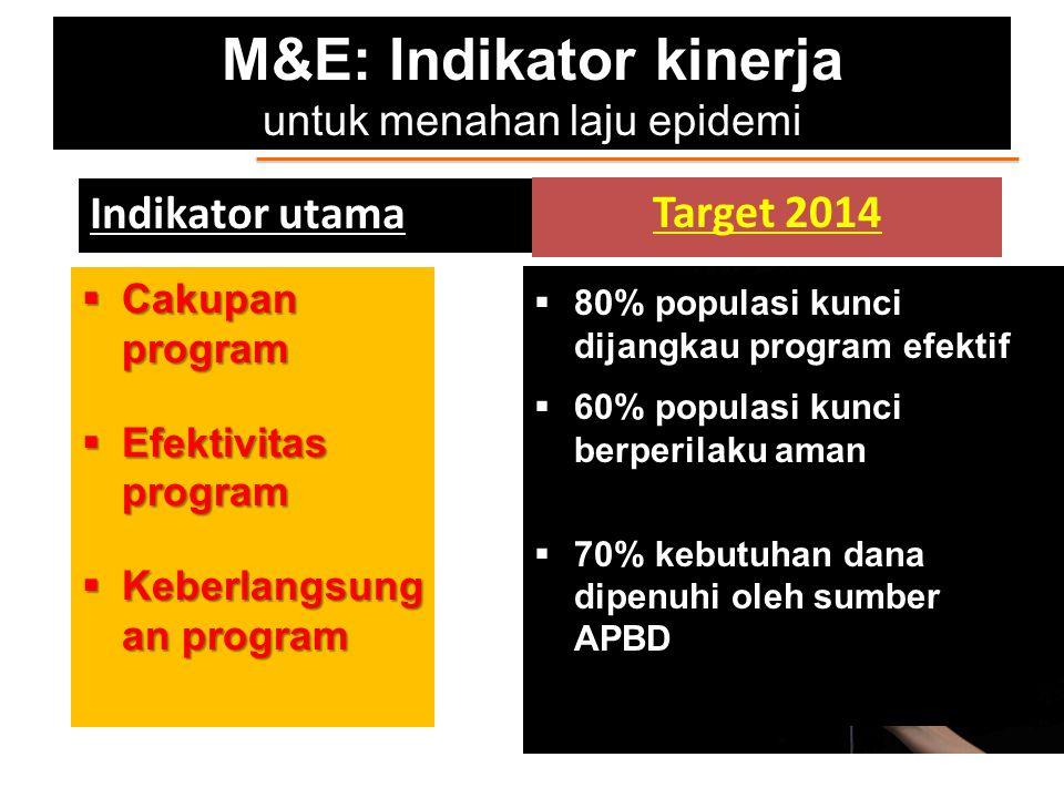 M&E: Indikator kinerja untuk menahan laju epidemi Indikator utama  Cakupan program  Efektivitas program  Keberlangsung an program Target 2014  80%