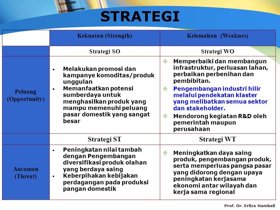 Prof. Dr. Erliza Hambali STRATEGI Kekuatan (Strength)Kelemahan (Weaknes) Strategi SOStrategi WO Peluang (Opportunity)  Melakukan promosi dan kampanye
