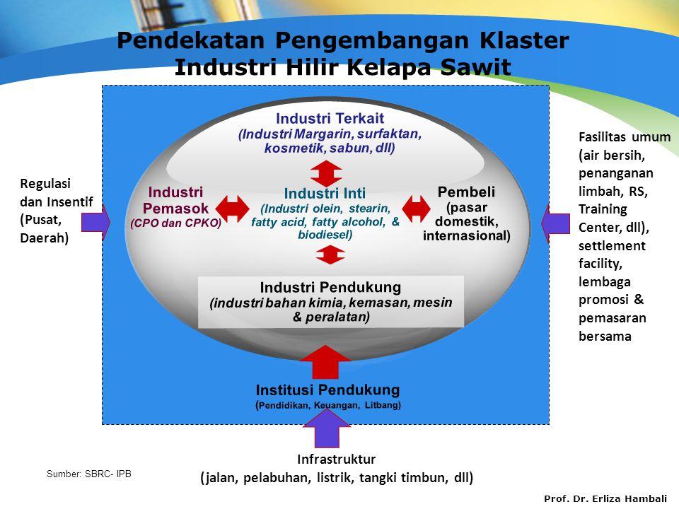 Prof. Dr. Erliza Hambali Pendekatan Pengembangan Klaster Industri Hilir Kelapa Sawit Sumber: SBRC- IPB Institusi Pendukung ( Pendidikan, Keuangan, Lit