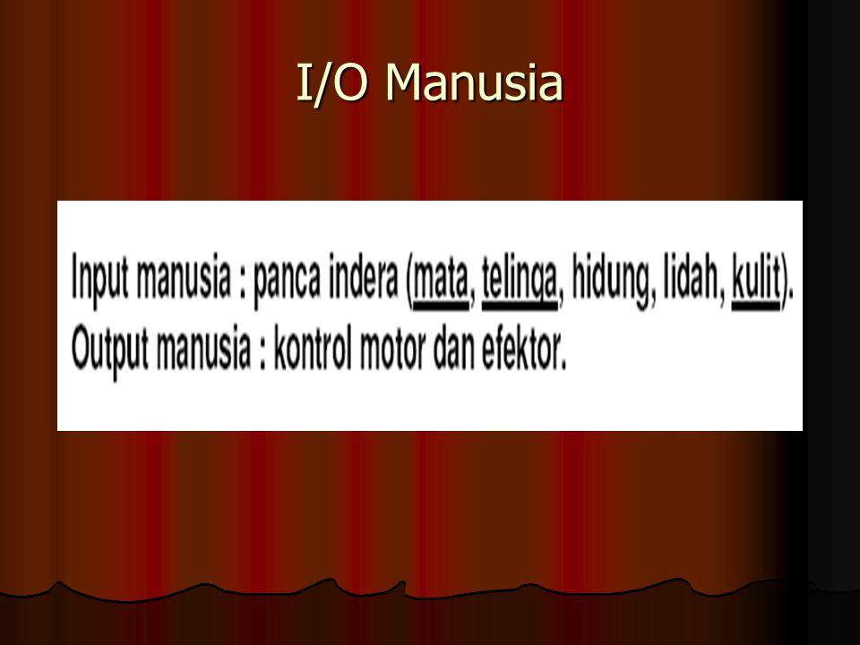 I/O Manusia