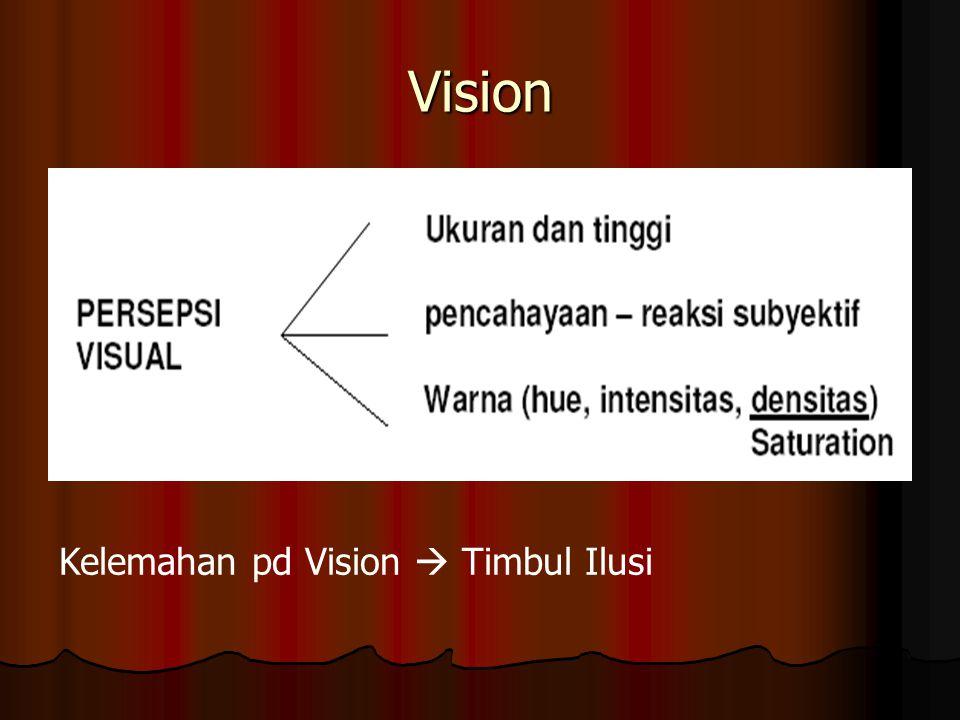 Vision Kelemahan pd Vision  Timbul Ilusi