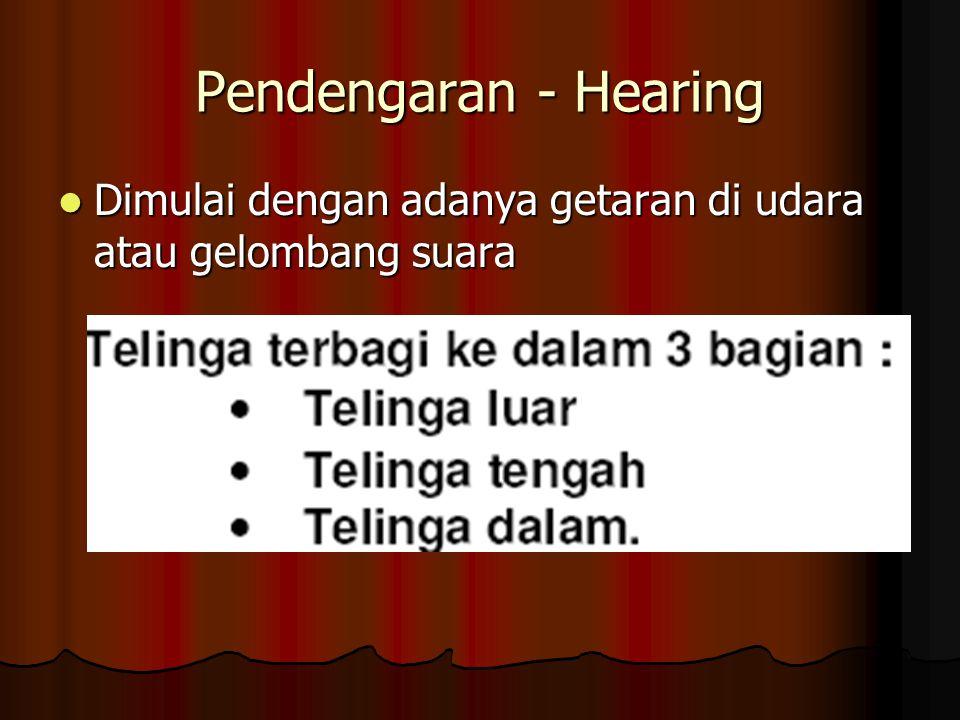 Pendengaran - Hearing Dimulai dengan adanya getaran di udara atau gelombang suara Dimulai dengan adanya getaran di udara atau gelombang suara