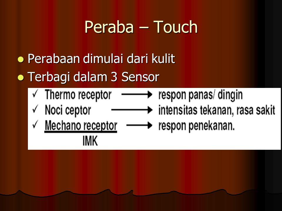 Peraba – Touch Perabaan dimulai dari kulit Perabaan dimulai dari kulit Terbagi dalam 3 Sensor Terbagi dalam 3 Sensor