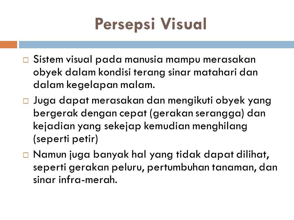 Persepsi Visual  Sistem visual pada manusia mampu merasakan obyek dalam kondisi terang sinar matahari dan dalam kegelapan malam.  Juga dapat merasak
