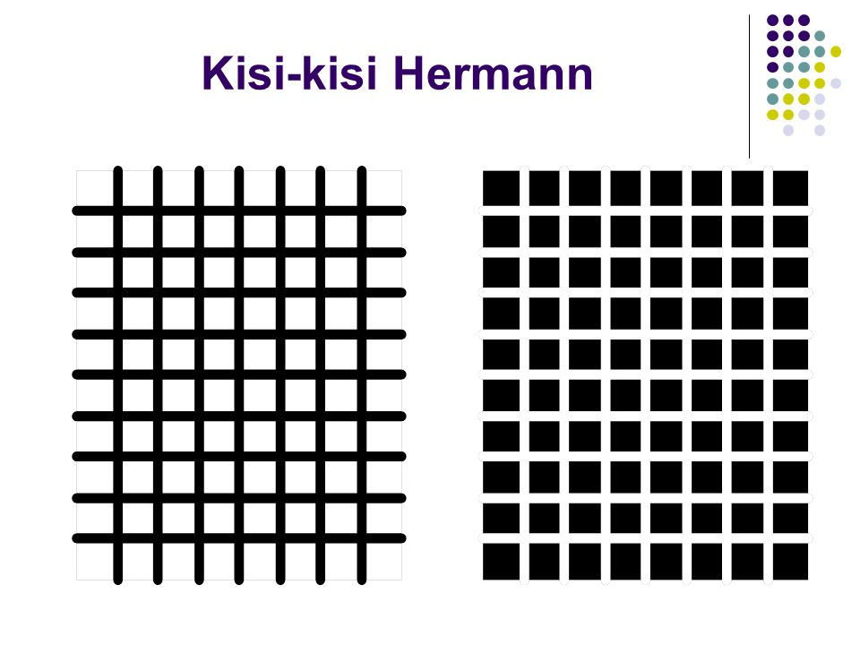 Kisi-kisi Hermann