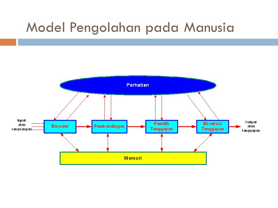 Persepsi Visual Pada Konteks Pola