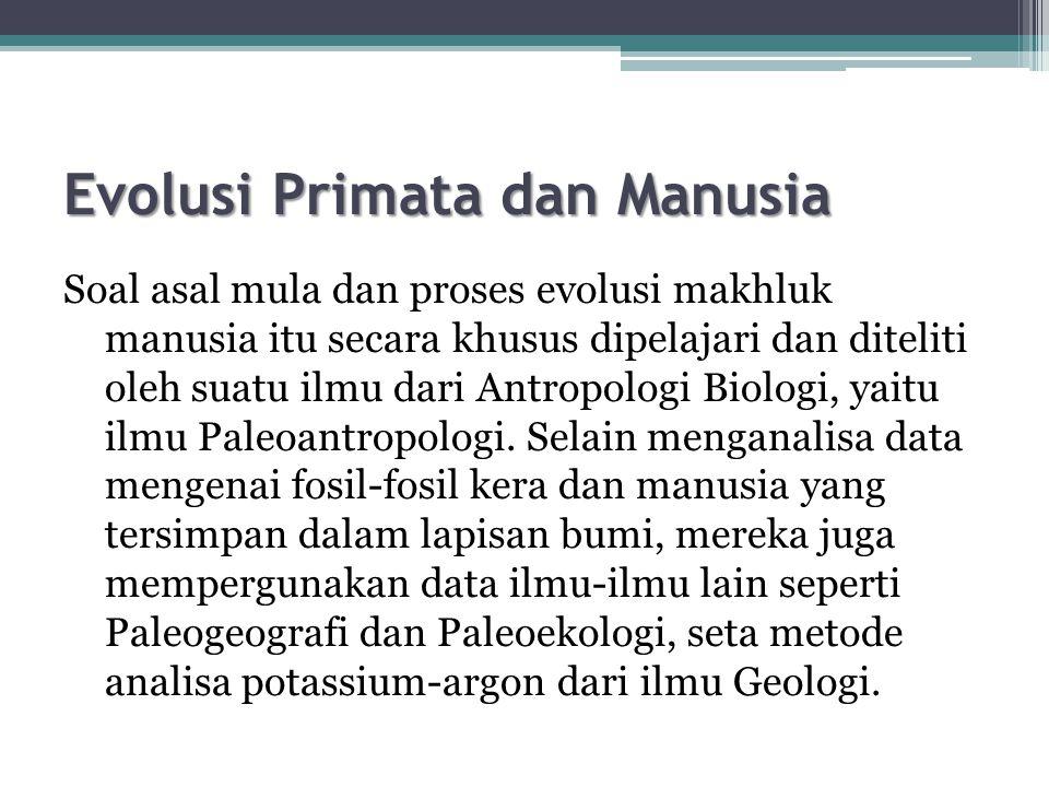 Evolusi Primata dan Manusia Soal asal mula dan proses evolusi makhluk manusia itu secara khusus dipelajari dan diteliti oleh suatu ilmu dari Antropologi Biologi, yaitu ilmu Paleoantropologi.