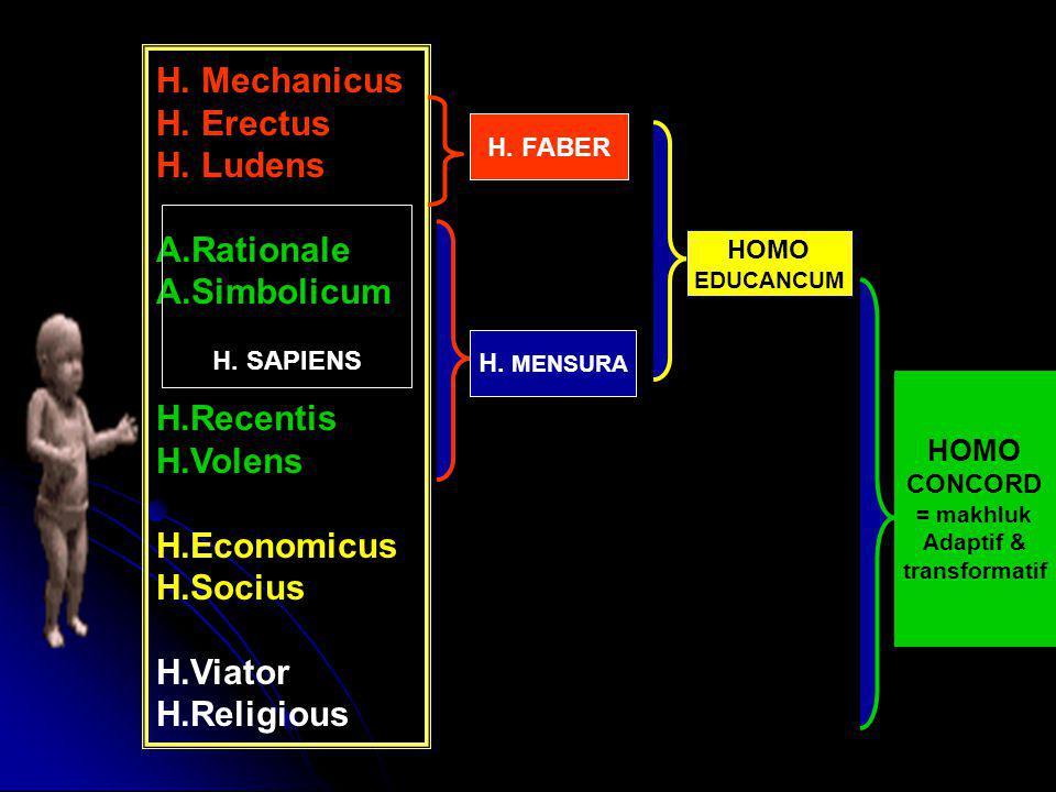 H. Mechanicus H. Erectus H. Ludens A.Rationale A.Simbolicum H.Recentis H.Volens H.Economicus H.Socius H.Viator H.Religious H. FABER H. SAPIENS H. MENS
