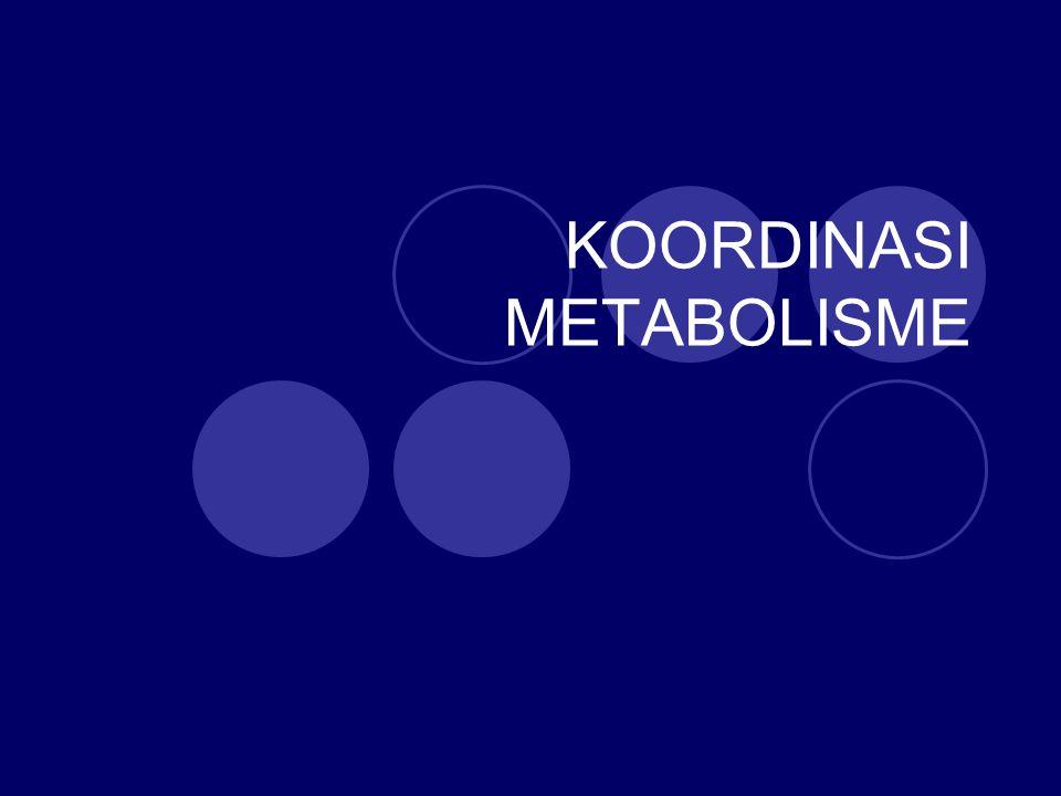 KOORDINASI METABOLISME